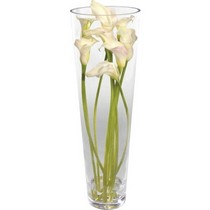 White Calla Lily and Vase.