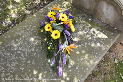 Yellow and Purple Sheaf